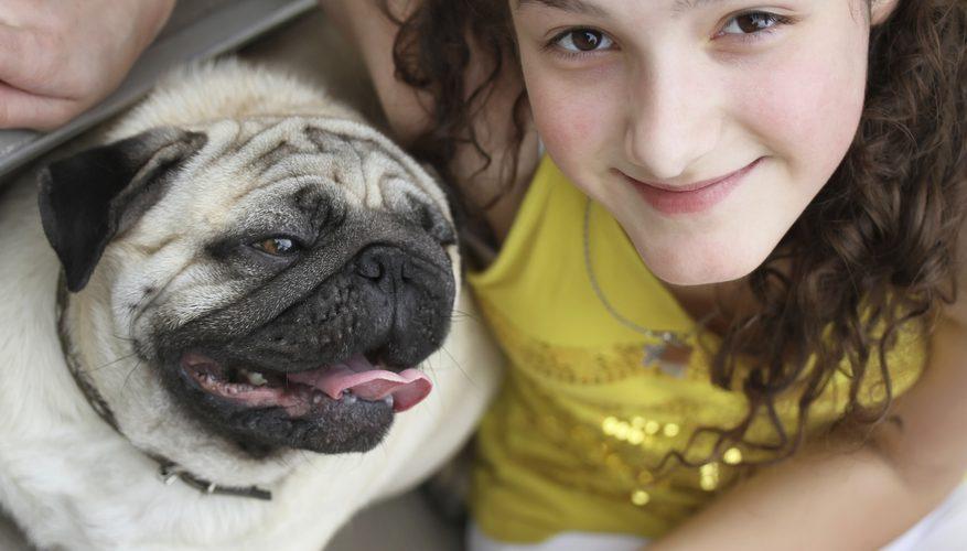Trabajos de voluntariado con animales para niños de 11 años en adelante