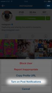 imagen de notificaciones de publicaciones de Instagram