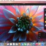 Pixelmator para Mac e iOS ahora a mitad de precio por tiempo limitado
