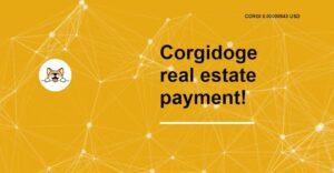 Revisión de Corgi Doge: ¿Es la moneda Corgi una buena inversión para 2021?