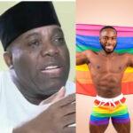 Mi hijo está en la comunidad gay para ser un instrumento de Dios - Fmr.  Asistente presidencial, Doyin Okupe